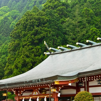「大山阿夫利神社」の写真素材