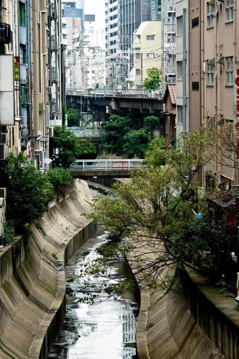 「渋谷川と街並み」の写真