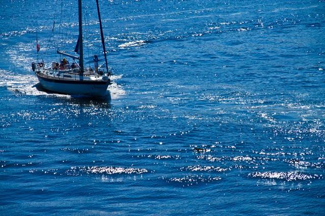 海の上のヨットの写真