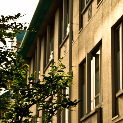 「夕暮れの学校校舎」の写真素材