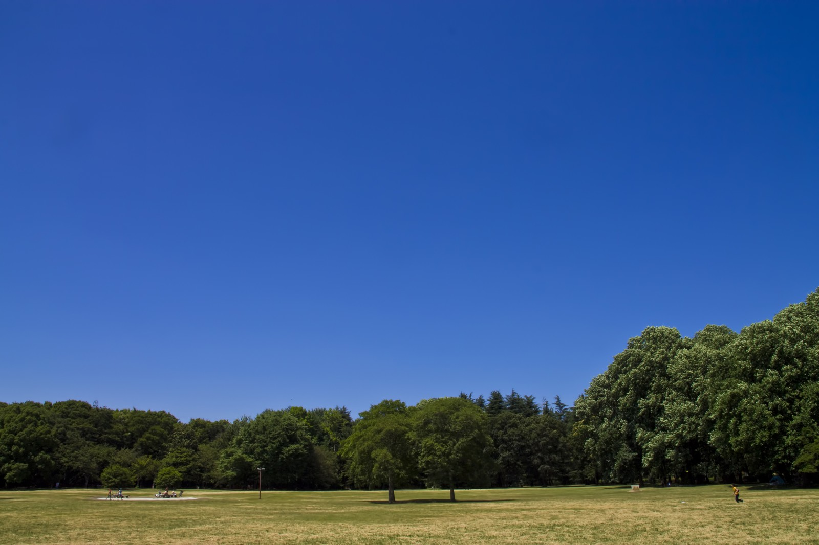 「青空と広場青空と広場」のフリー写真素材を拡大