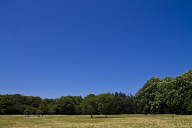 青空と広場の写真