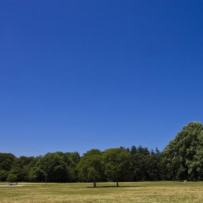 「青空と広場」の写真素材