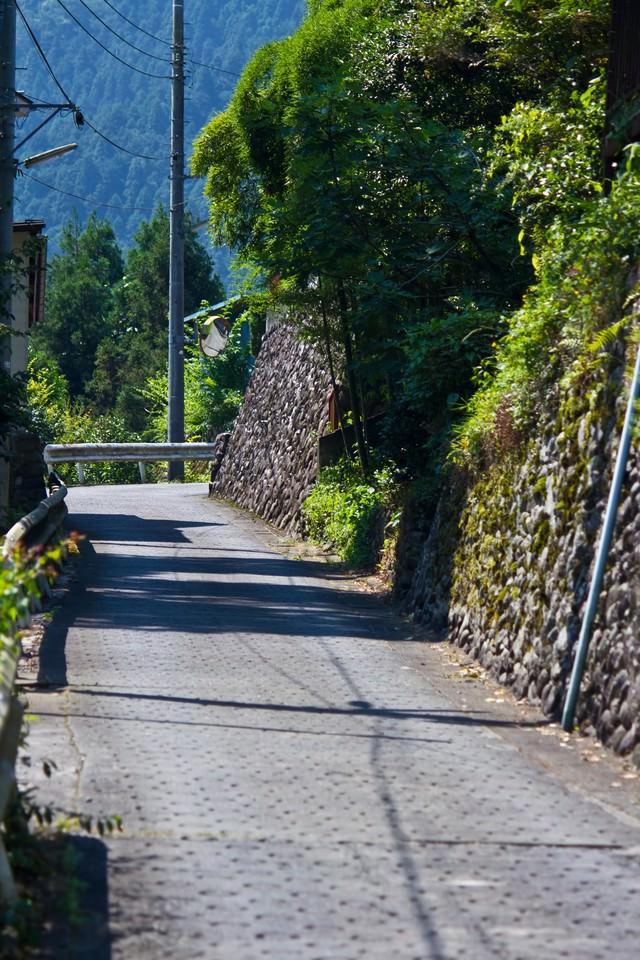田舎の坂道の写真