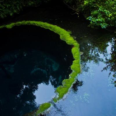 「柿田川の湧水」の写真素材