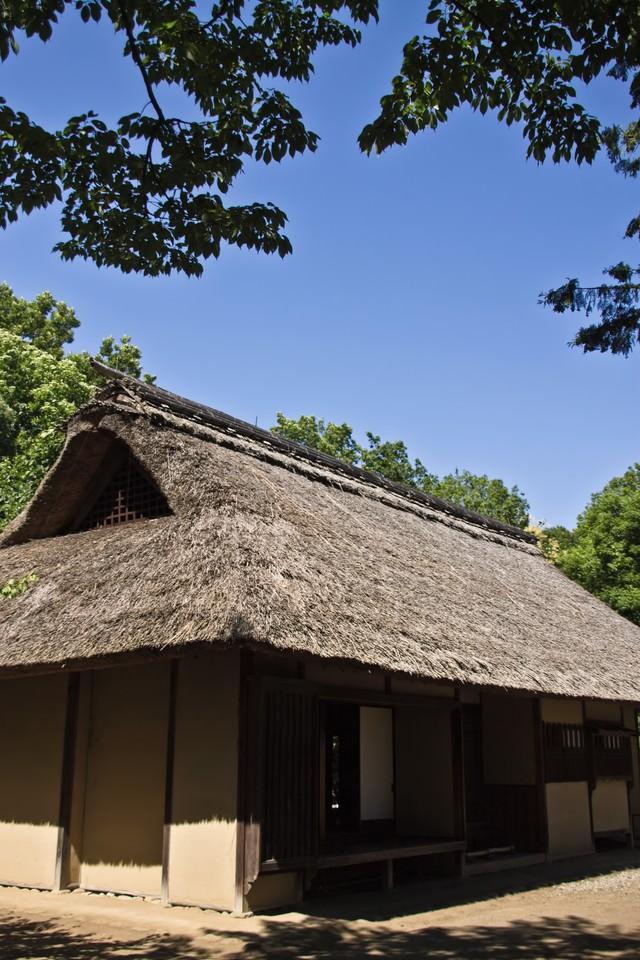 かわぶき屋根の民家の写真