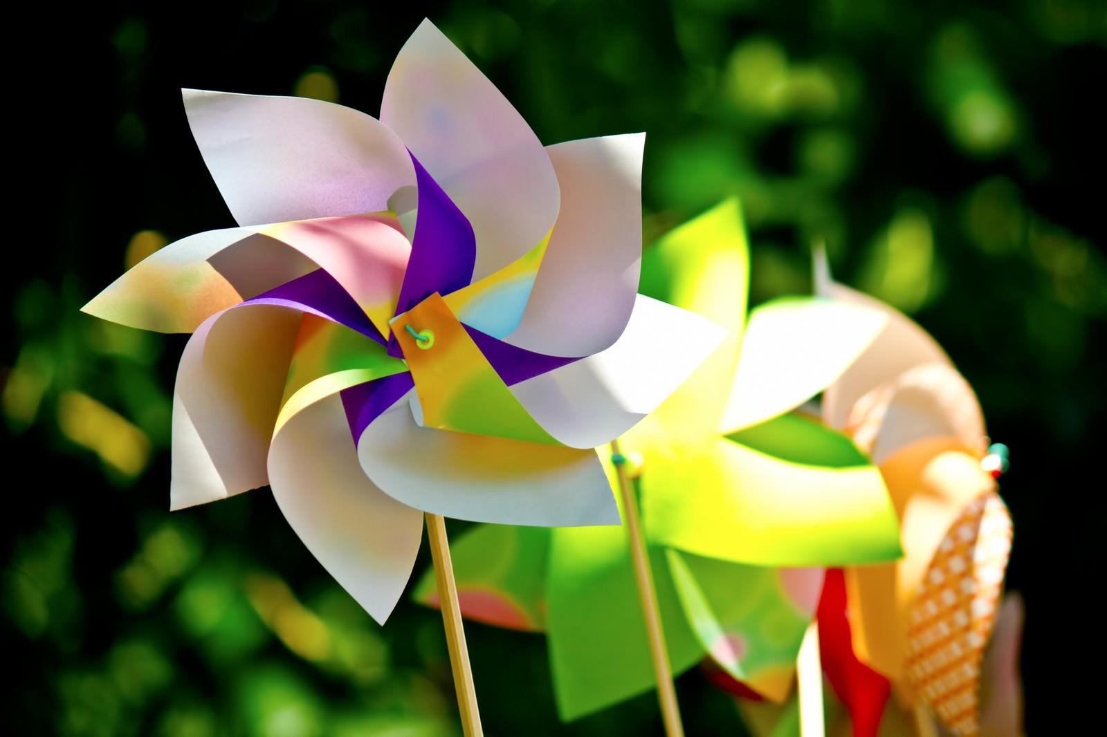 「鮮やかな風車(かざぐるま)」の写真