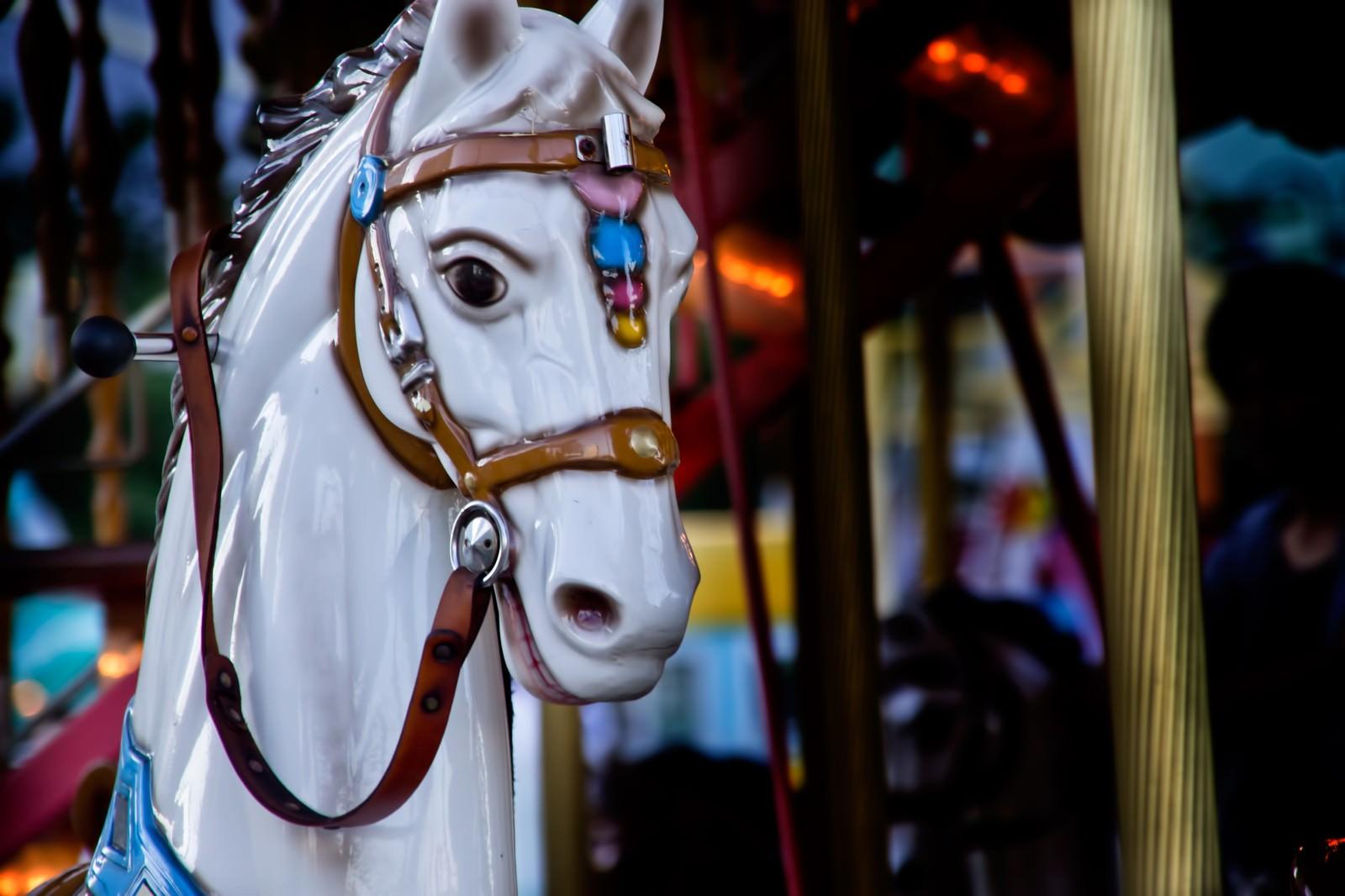 「メリーゴーランドの馬」の写真