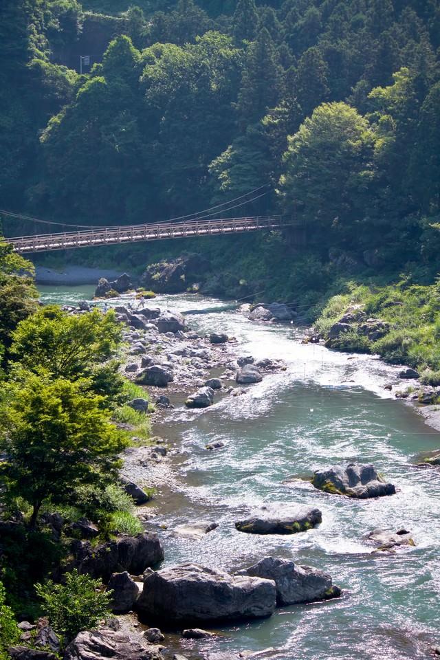 御岳渓流の様子の写真