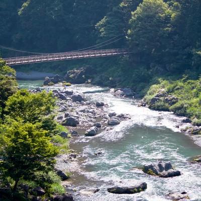 「御岳渓流の様子」の写真素材