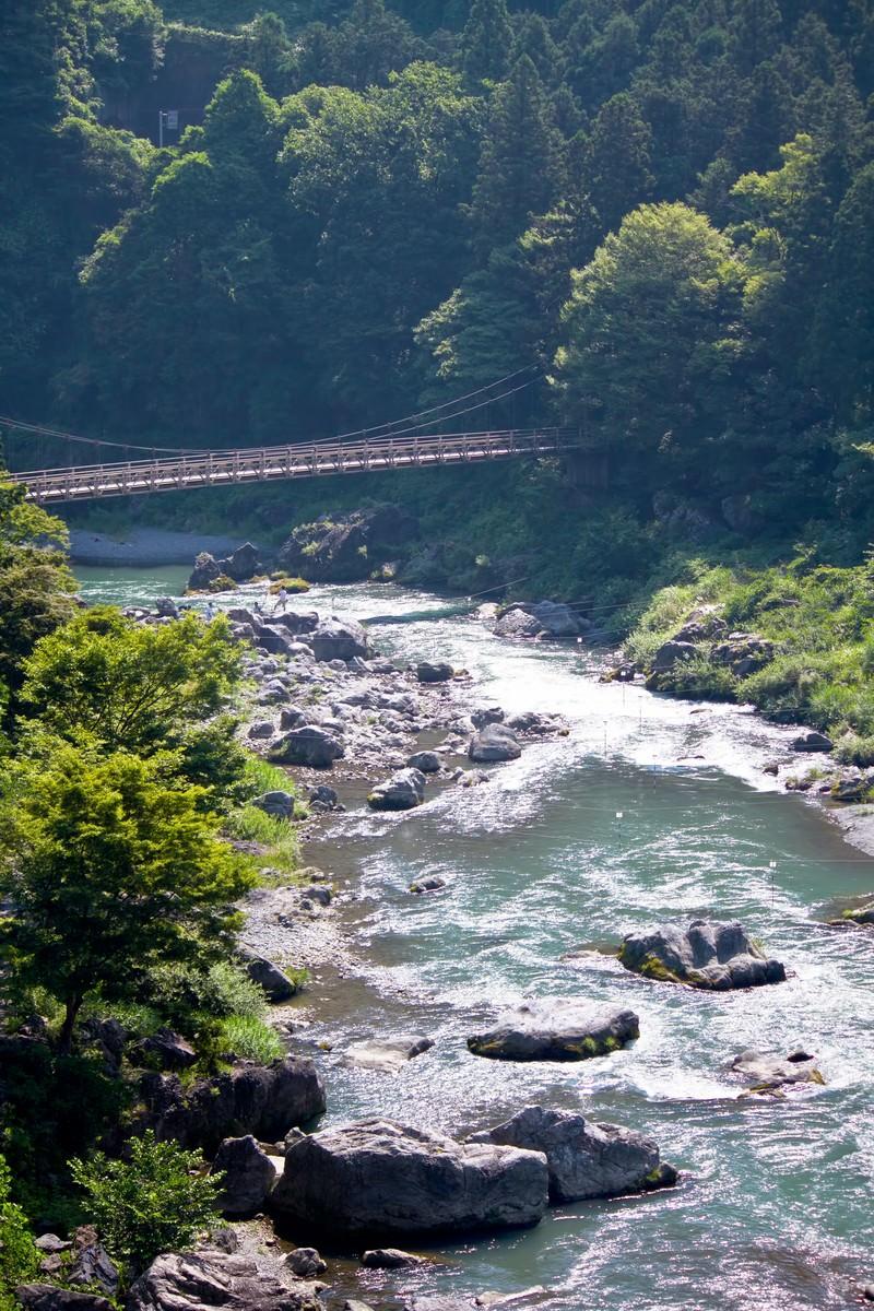 「御岳渓流の様子」の写真