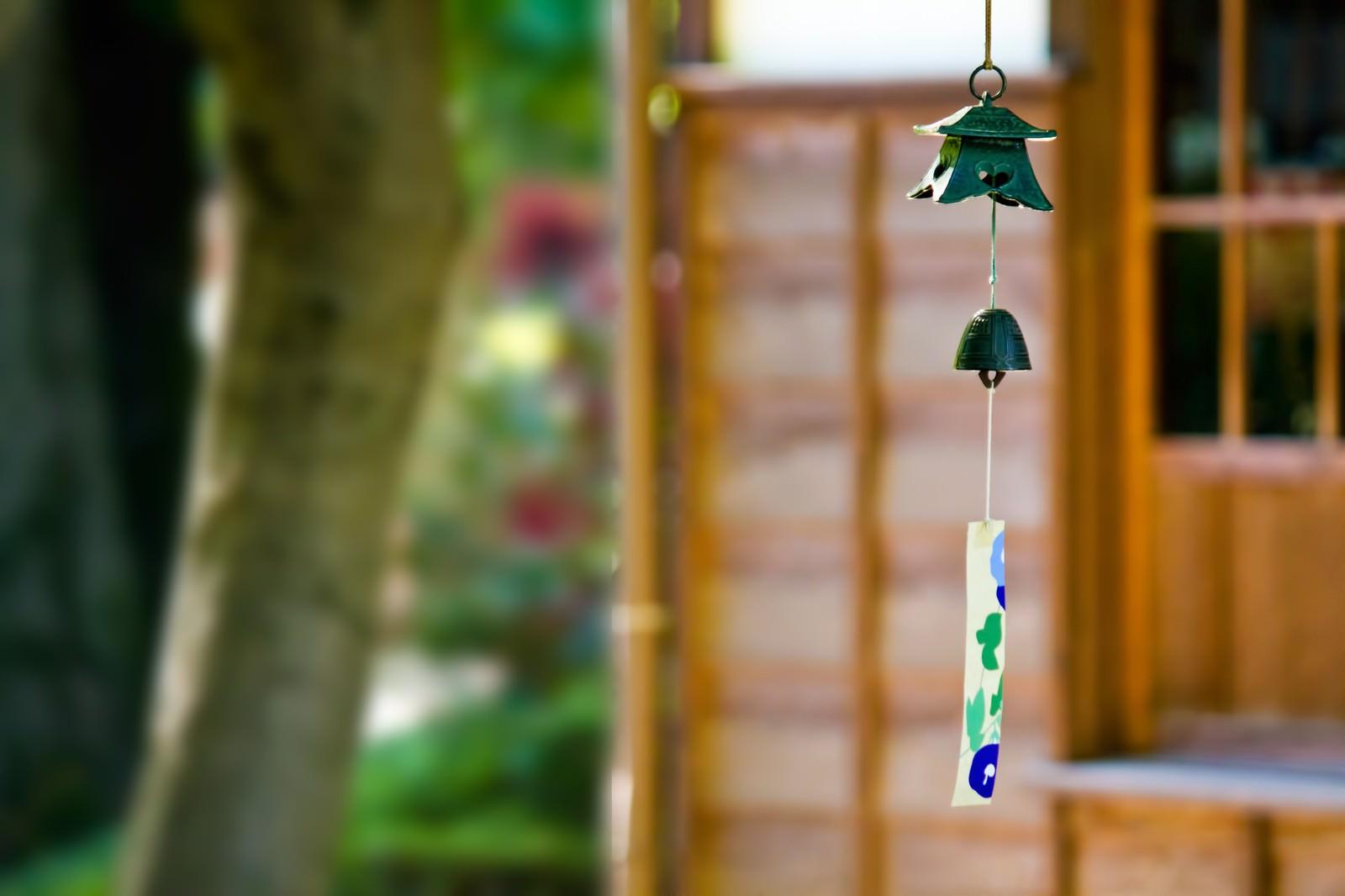 「庭先の風鈴」の写真