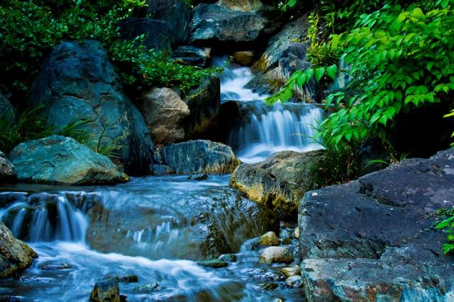 水の流れる小川の様子の写真