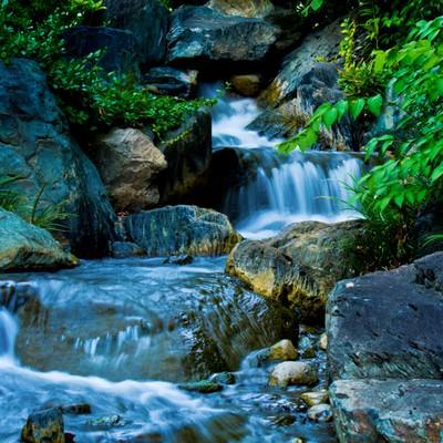 「水の流れる小川の様子」の写真素材