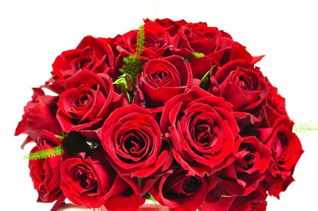 赤いバラのブーケの写真