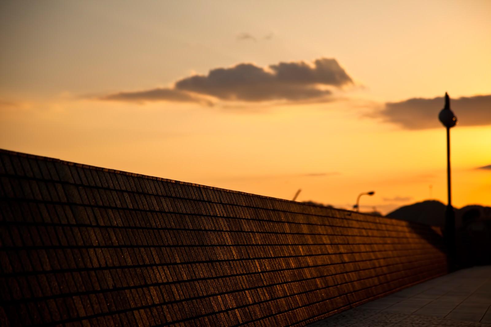 「夕暮れの防波堤」の写真