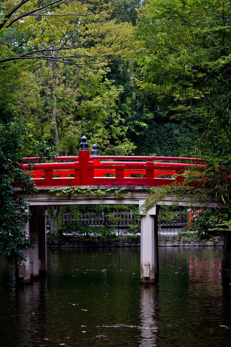 「池に架かる紅い橋」の写真