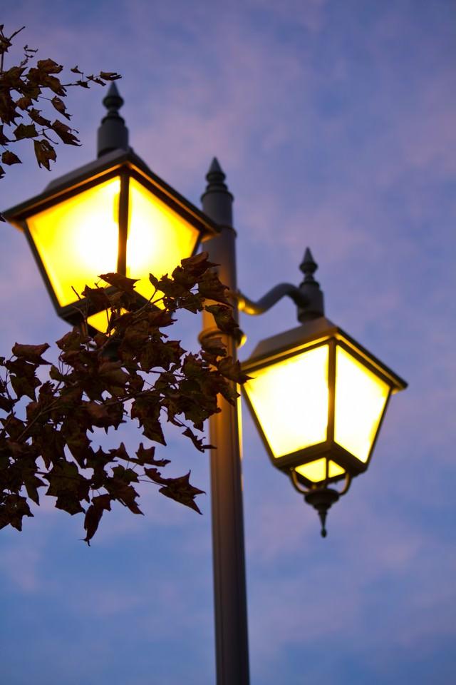 枯葉とオシャレな街灯の写真