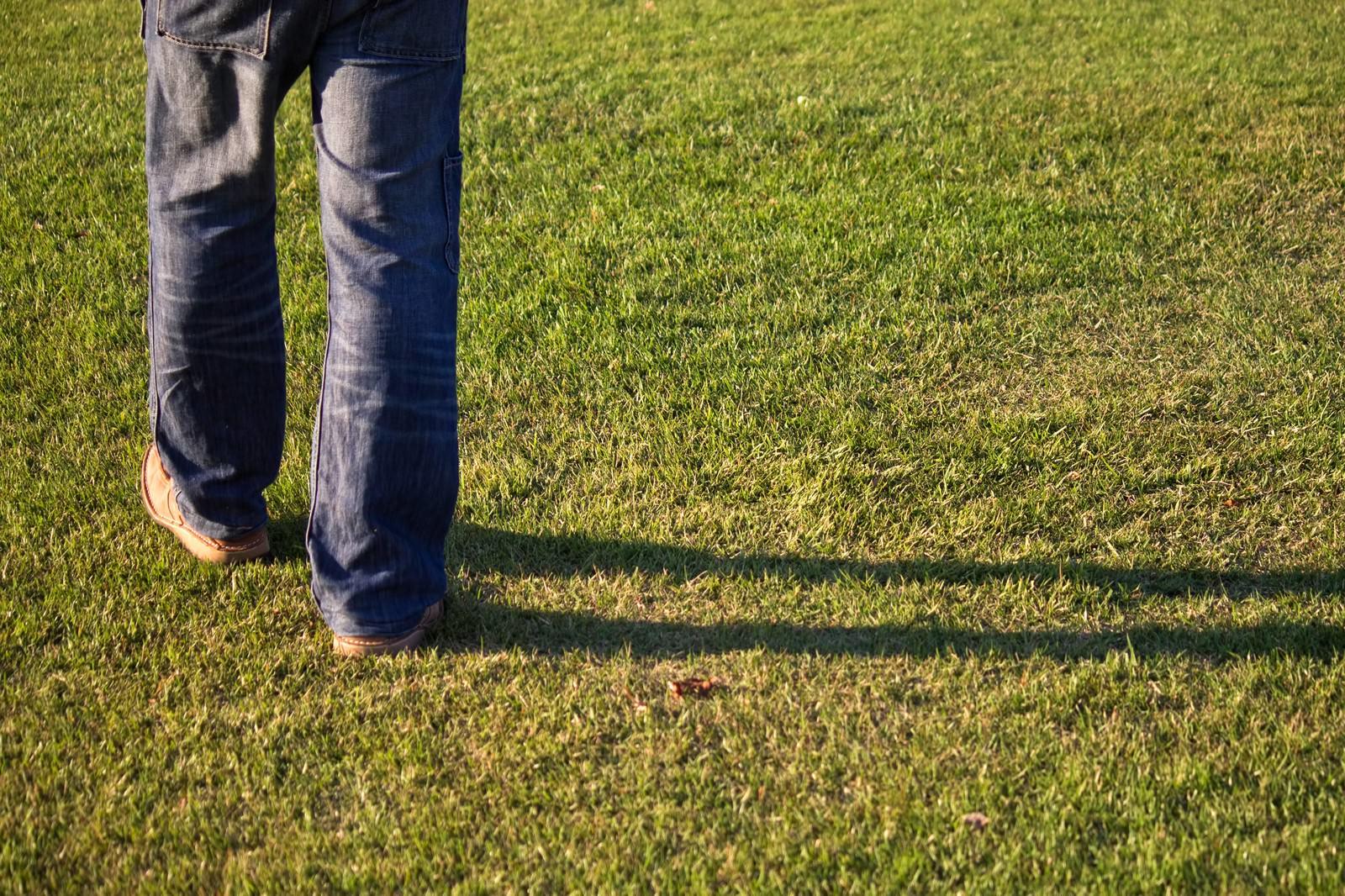 「秋の芝生と足元の影」の写真
