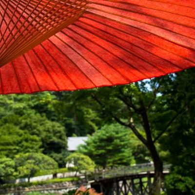 「日本庭園と赤い日傘」の写真素材