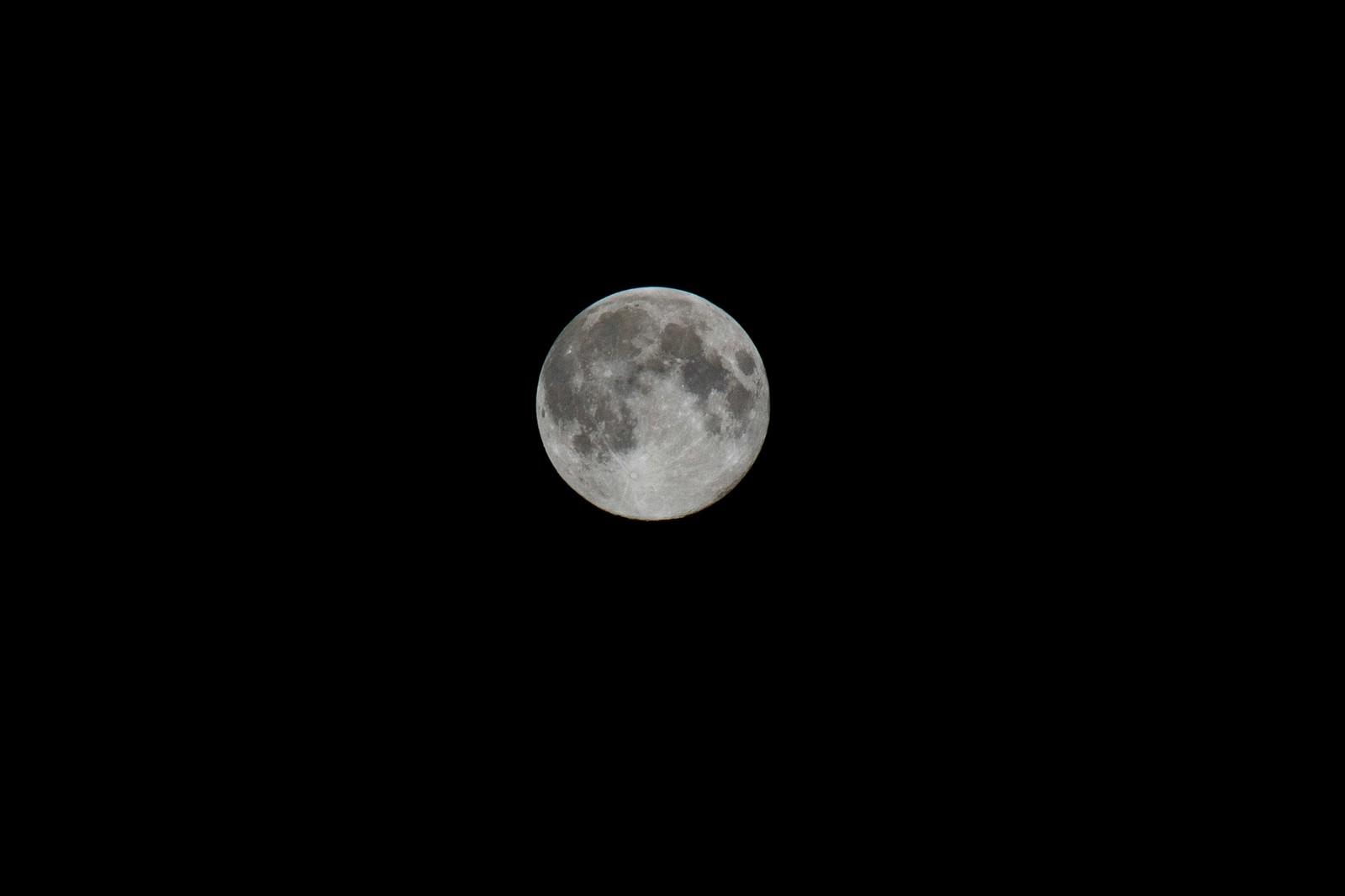 「中秋の名月」の写真