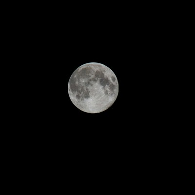 中秋の名月の写真