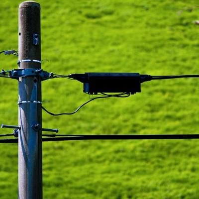 「電柱と拡がる緑」の写真素材