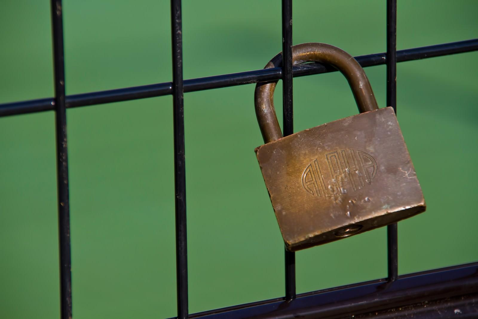 「金網に取り付けられた南京錠」の写真