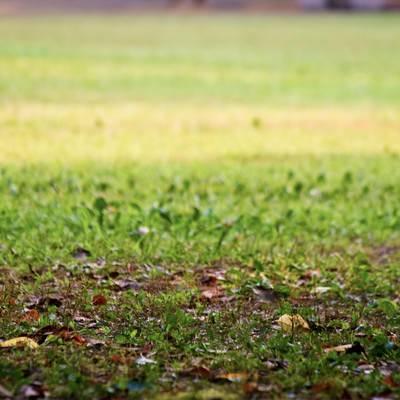 「落ち葉と公園のベンチ」の写真素材