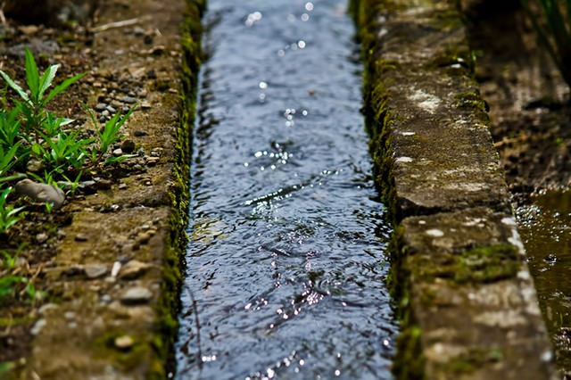 田舎の用水路の写真