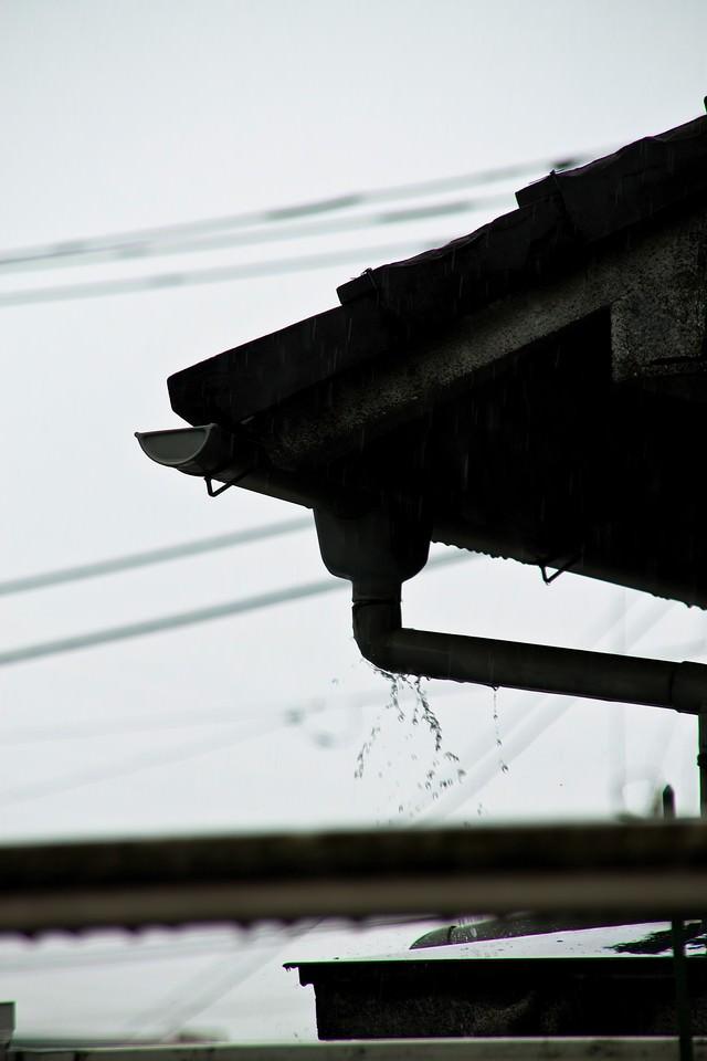 雨どいとしたたる雨の写真