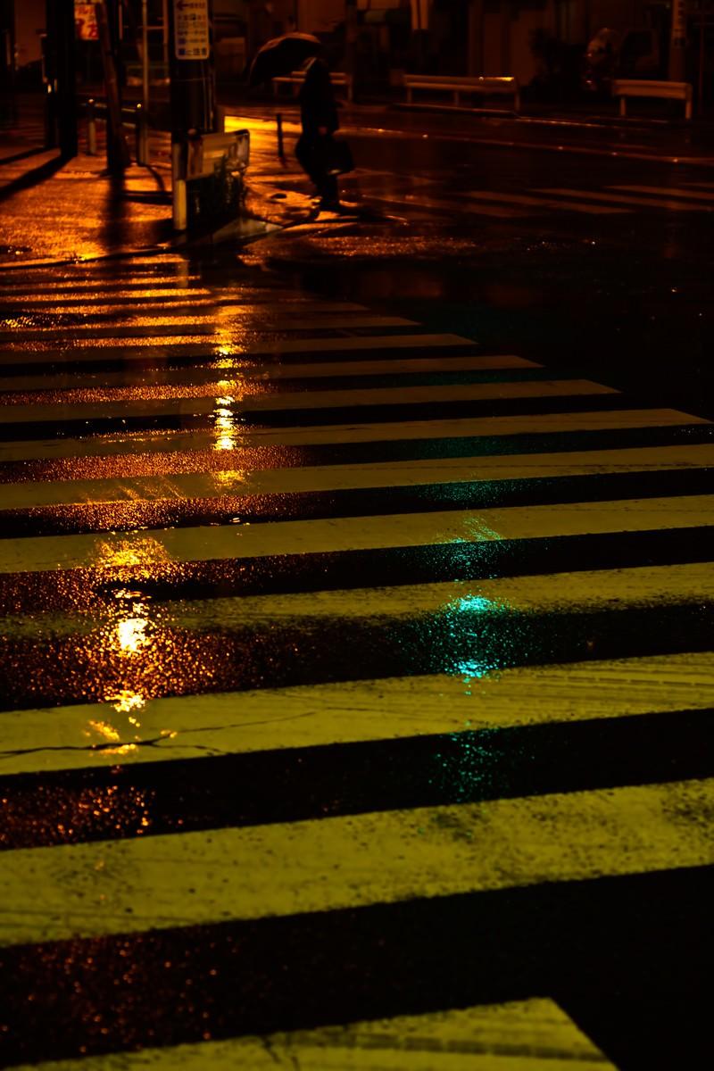 「雨に濡れた横断歩道」の写真