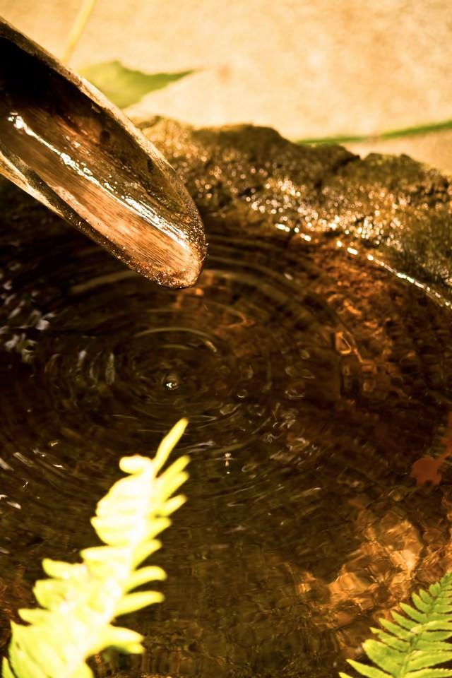 竹から滴る水面の波紋の写真