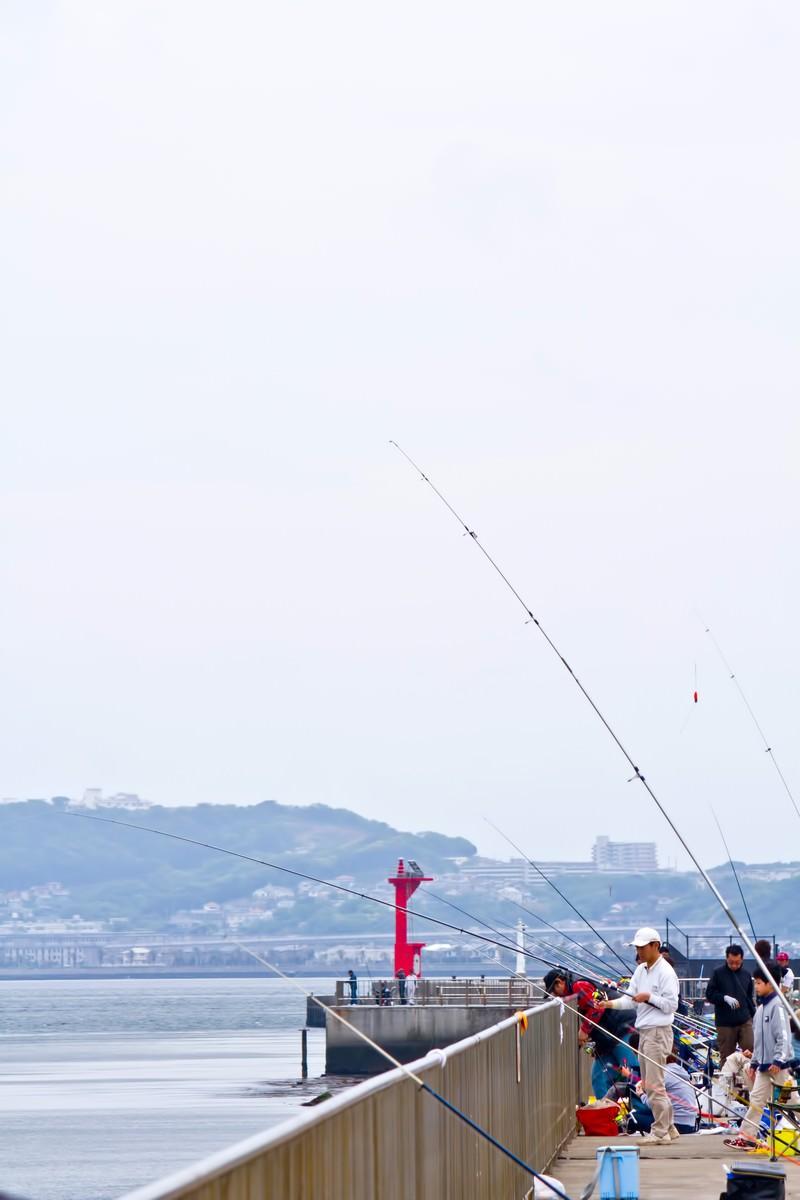 「埠頭の釣り人達」の写真