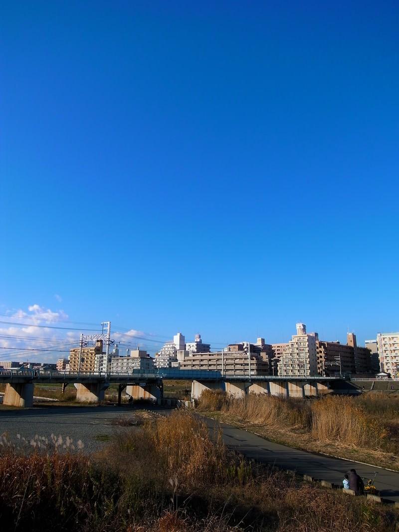 「河川敷の街並みと青空」の写真