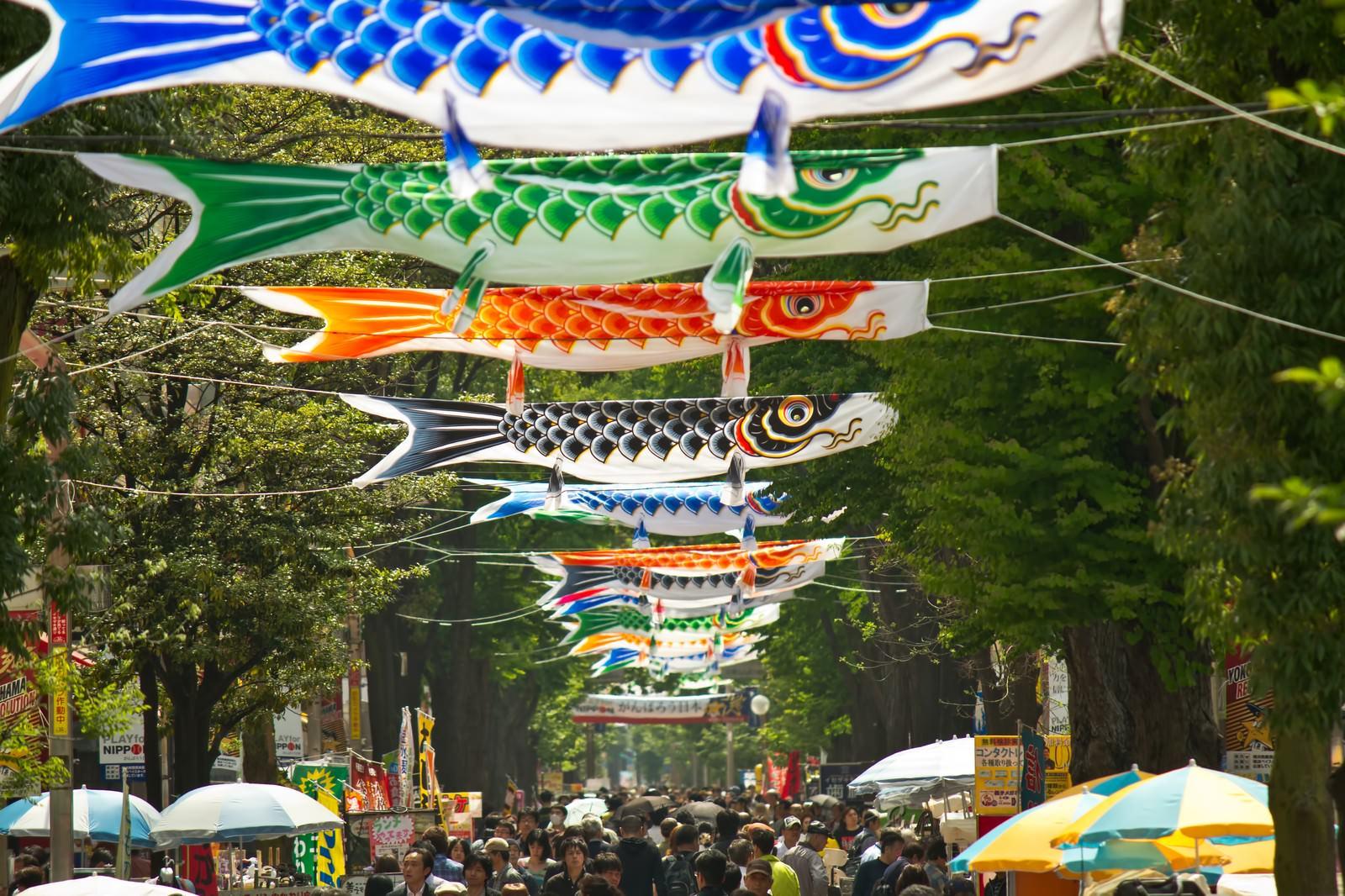 「商店街の鯉のぼり商店街の鯉のぼり」のフリー写真素材を拡大