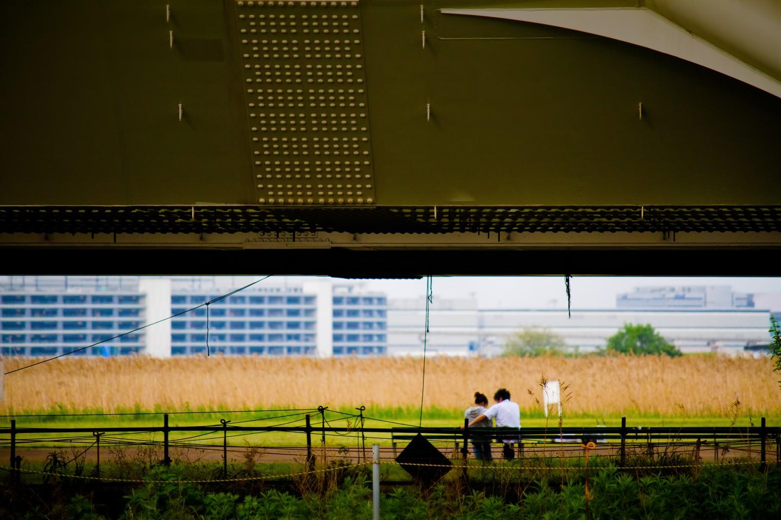 「高架下の恋人達」の写真
