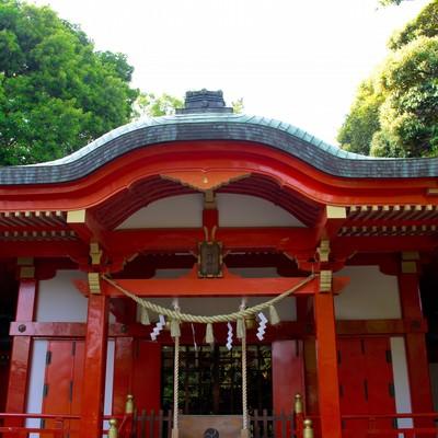 熊野神社の光景の写真