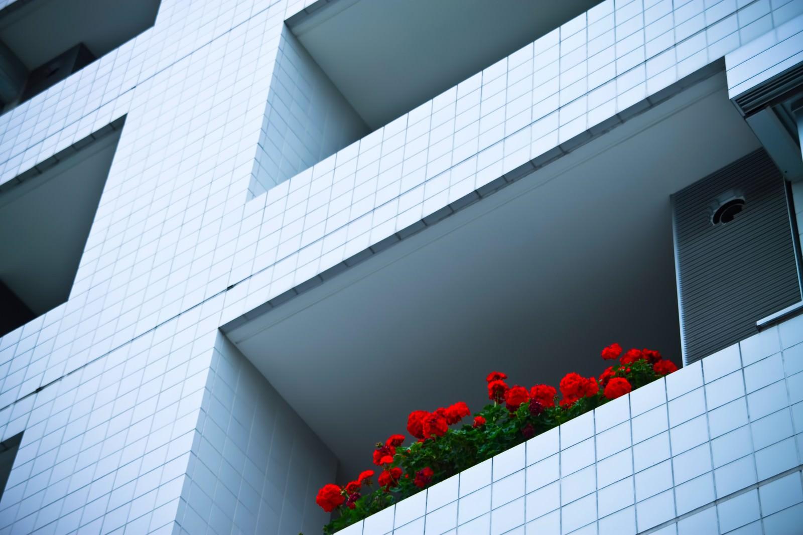 「マンションと赤い花マンションと赤い花」のフリー写真素材を拡大