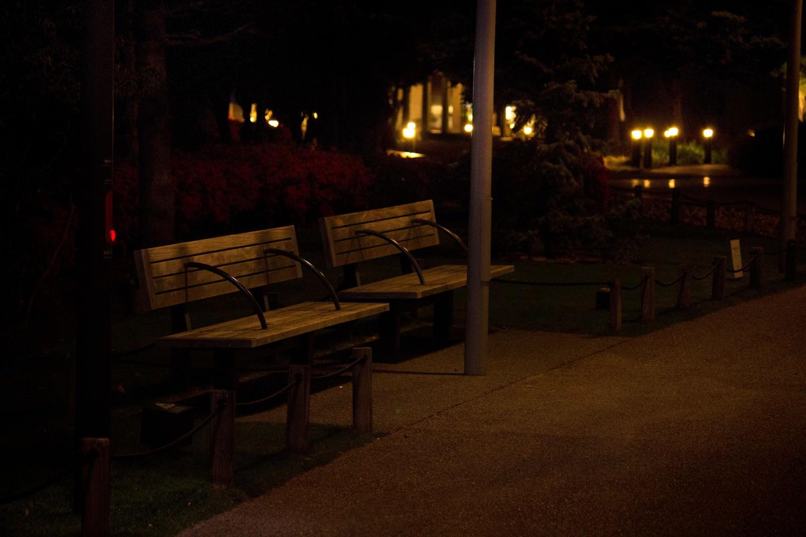 「夜間のベンチ」の写真