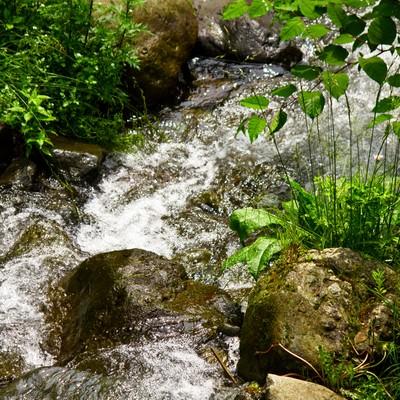 「小川の清流」の写真素材