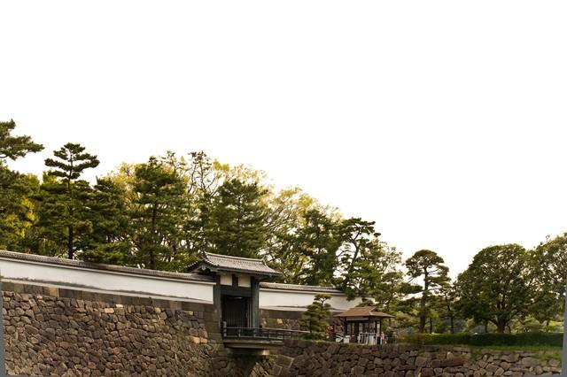 皇居のお堀と松の写真