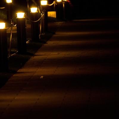 夜道を照らす灯りの写真