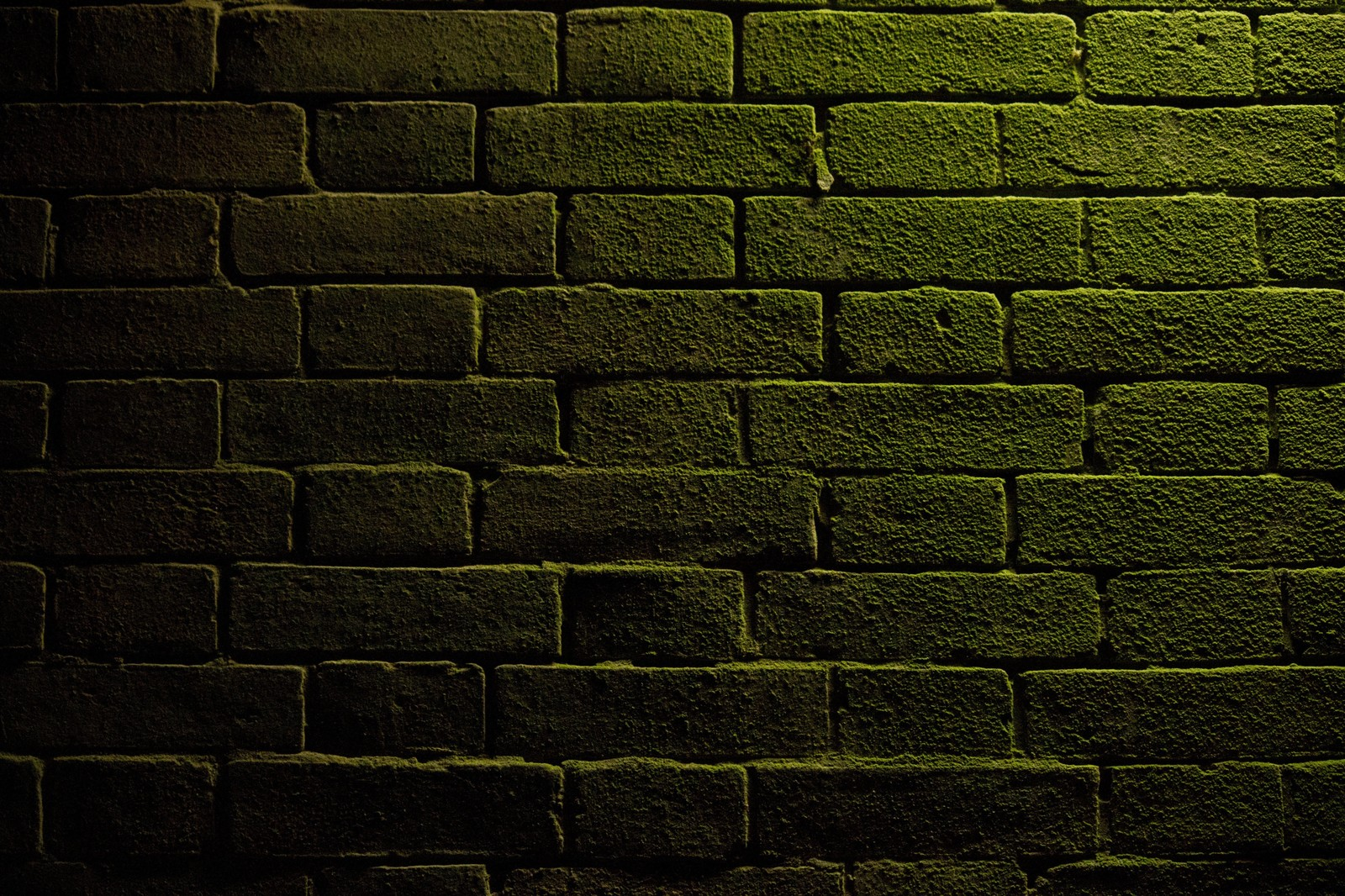 「仄暗いレンガ」の写真