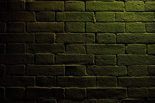 仄暗いレンガの写真