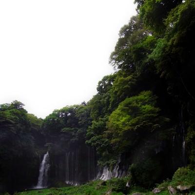 「白糸の滝」の写真素材