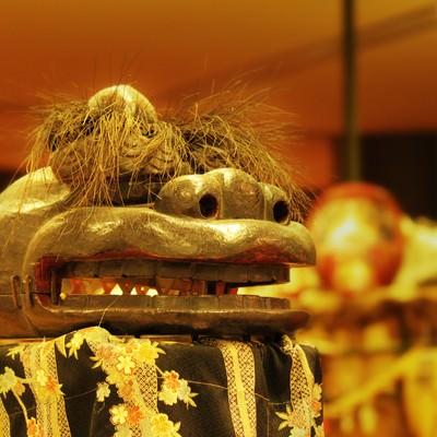 「獅子舞」の写真素材