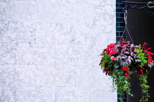 吊るされた鮮やかな花の写真