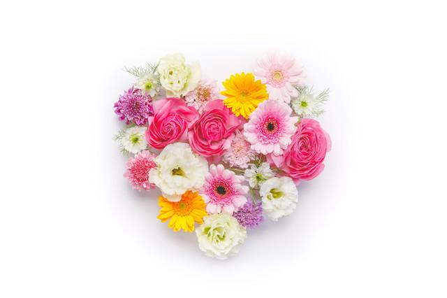 ハート型の花の写真