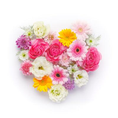 「ハート型の花」の写真素材